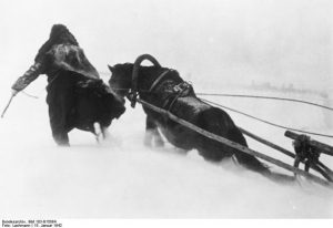 German-horse-drawn-supplies-in-snow-595x409